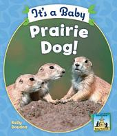 It's a Baby Prairie Dog