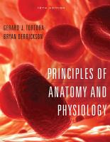 Principles of Anatomy and Physiology PDF