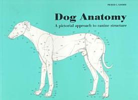 Dog Anatomy PDF