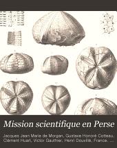 Mission scientifique en Perse: Volumes3à4