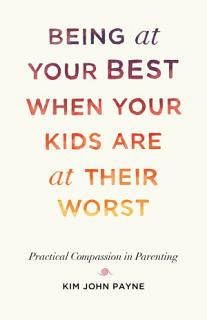 Being at Your Best When Your Kids Are at Their Worst Book