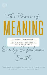 The Power of Meaning PDF