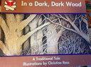 In a Dark  Dark Wood PDF