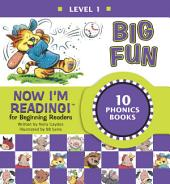 Now I'm Reading! Level 1: Big Fun