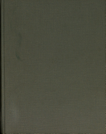 Middle East Perspective PDF