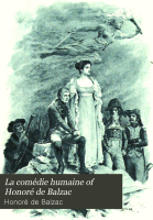 The Chouans  A passion in the desert  Z  Marcas  The brotherhood of consolation PDF
