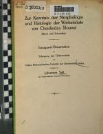 Zur Kenntnis der Morphologie und Histologie der Wirbelsaule von Chauliodus Sloanei PDF