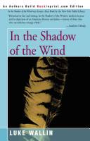 In the Shadow of the Wind PDF