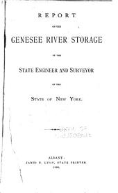 Report on the Genesee River Storage