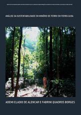 An  lise Da Sustentabilidade Das Fontes Energ  ticas Utilizadas Na Transforma    o Do Min  rio De Ferro Em Ferro Gusa Para O Estado Do Par   PDF