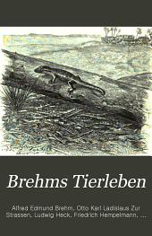 Brehms Tierleben: allgemeine Kunde des Tierreichs, Band 5