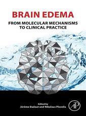 Brain Edema: From Molecular Mechanisms to Clinical Practice