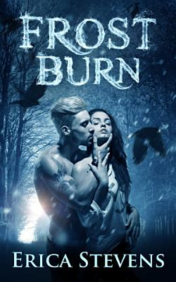 Frost Burn  The Fire   Ice Series  Book 1