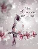 Planner 2 Year 2020   2021 PDF