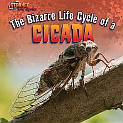 The Bizarre Life Cycle of a Cicada PDF