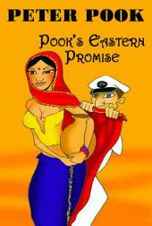 Pook's Eastern Promise: Three Years Behind the Mast