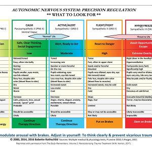 Autonomic Nervous System Table
