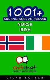 1001+ grunnleggende fraser norsk - Irish