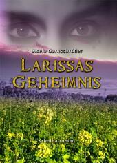 Larissas Geheimnis