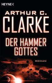 Der Hammer Gottes: Roman