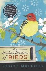 The Healing Wisdom of Birds