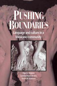 Pushing Boundaries PDF