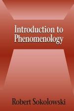 Introduction to Phenomenology