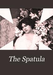The Spatula: Volume 11