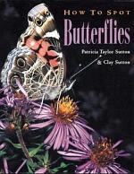 How to Spot Butterflies