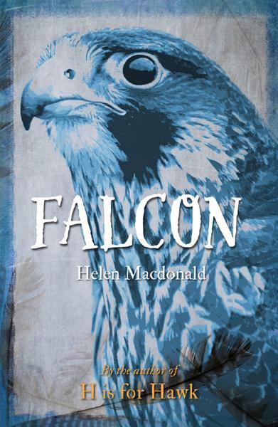 Download Falcon Book