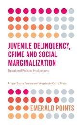 Juvenile Delinquency, Crime and Social Marginalization: Social and Political Implications