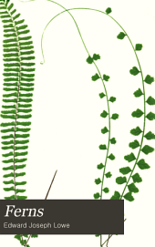 Ferns: British and Exotic, Volume 5