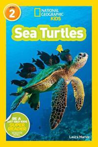 Sea Turtles PDF