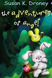 The Adventures of Angel