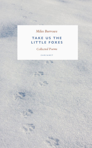 Take us the Little Foxes