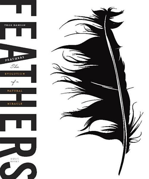 Download Feathers Book