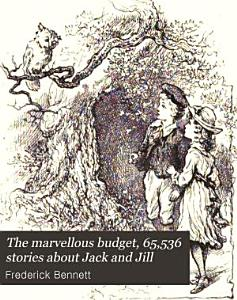 The marvellous budget  65 536 stories about Jack and Jill PDF