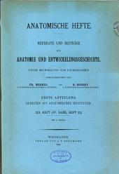 Anatomische hefte: Volume 12