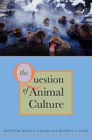 The Question of Animal Culture PDF