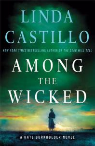 Among the Wicked Book