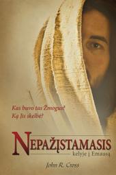 Nepažįstamasis kelyje į Emausą: Kas buvo tas Žmogus? Ką Jis skelbė?
