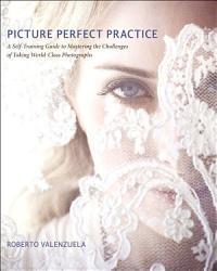 Picture Perfect Practice Book PDF