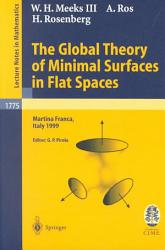 The Global Theory Of Minimal Surfaces In Flat Spaces Book PDF