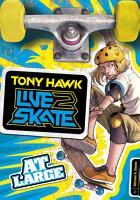 Tony Hawk  At Large PDF