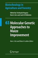 Molecular Genetic Approaches to Maize Improvement PDF