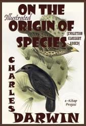 On the Origin Of Species: Illustrated
