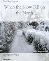 When the Snow Fell on the North: A Winter Walk