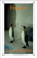 Penguins  Birds in Tuxedo Suits PDF