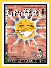 Just Graffiti! vol. 1: Big Book of Graffiti Photographs & Pictures