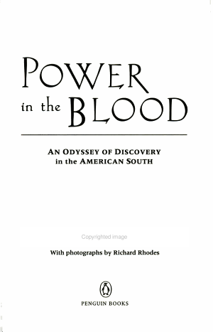 Power in the Blood   an Odyssey of Discovery in the American South PDF